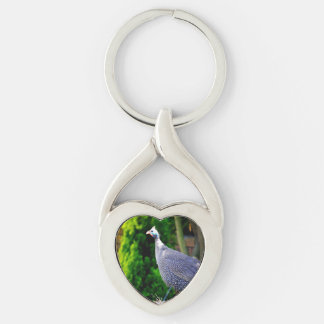Blue Helmeted Guinea Fowl standing in the sun Silver-Colored Twisted Heart Key Ring