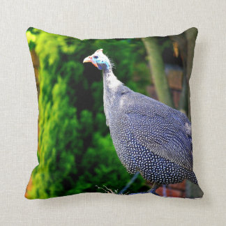 Blue Helmeted Guinea Fowl standing in the sun Throw Pillow