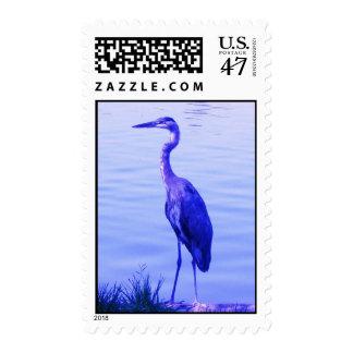 Blue Heron Egret Postage
