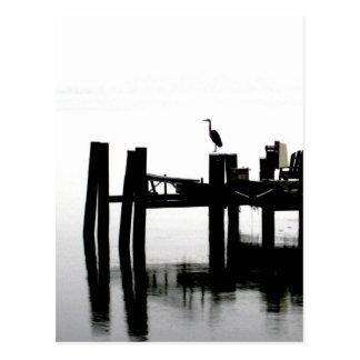 Blue Heron on a Gray Day Postcard