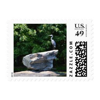 Blue Heron Postage Stamp