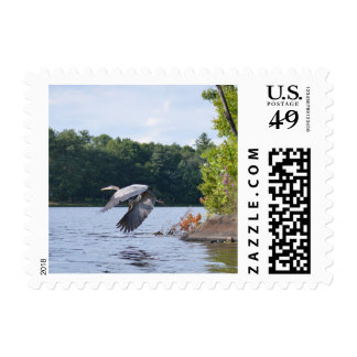 Blue Heron Stamps