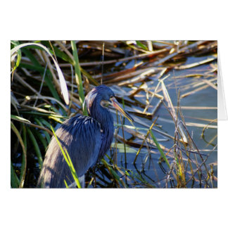 Blue Heron's Home Note Card