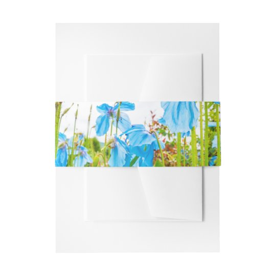 Blue Himalayan Poppies Wedding Invitation Belly Band