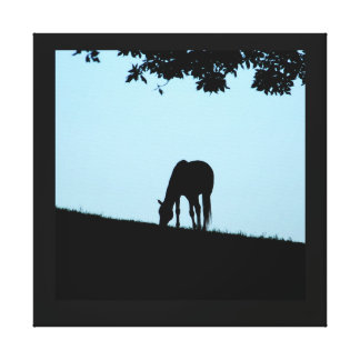 Blue Horse #2 Stretched Canvas Prints