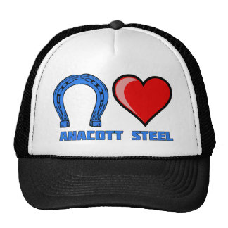 Blue Horseshoe Loves Anacott Steel hat