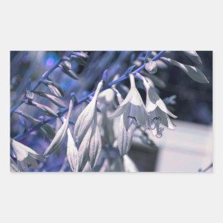 Blue Hue White Hosta Flowers Digital Art Design Rectangular Sticker