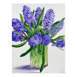 Blue Hyacinths Postcard