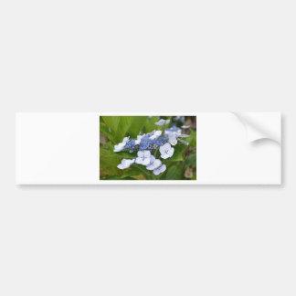 Blue Hydrangea Bumper Sticker