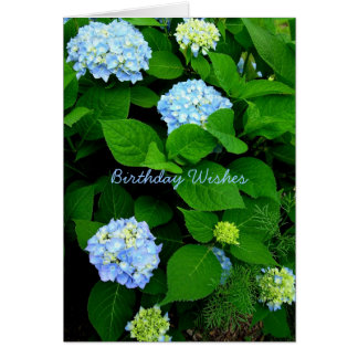 Blue Hydrangea Christian Birthday Card