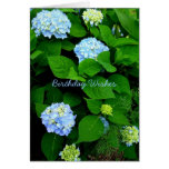 Blue Hydrangea Christian Birthday Greeting Card