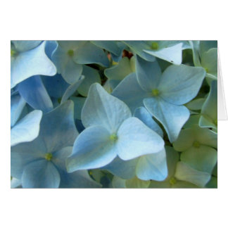 Blue Hydrangea Flower II Greeting Note Card