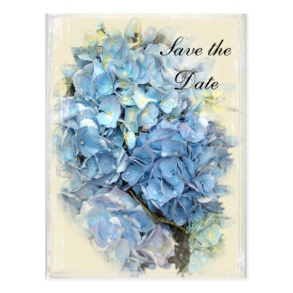 Blue Hydrangea Flower Wedding Save the Date Postcard