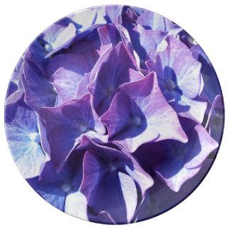Blue Hydrangea Flowers Close Up Photo Porcelain Plate