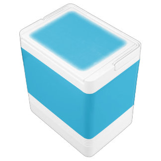 Blue Igloo Cool Box