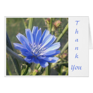 Blue in the Afternoon Note Card