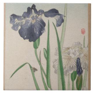 Blue Iris Ceramic Tiles