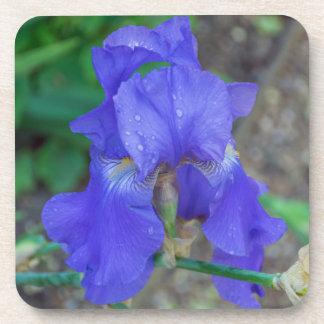 Blue iris hard plastic coasters