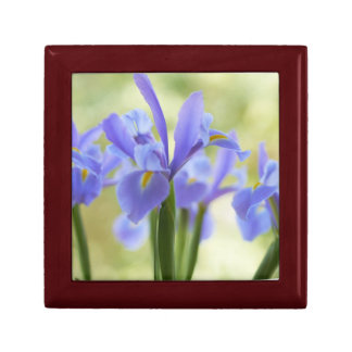 Blue Iris Small Square Gift Box