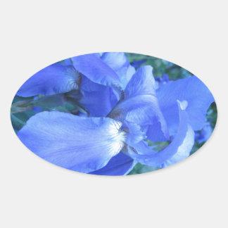 Blue Iris Stickers
