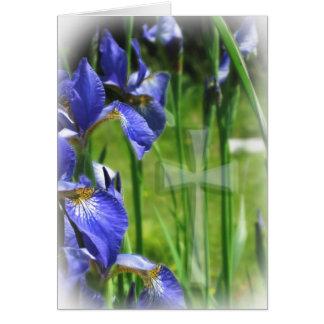 Blue Iris with Cross II Card
