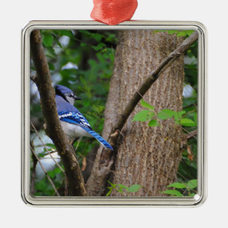 Blue Jay 2 Silver-Colored Square Decoration