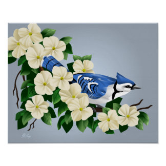 Blue Jay Art Poster