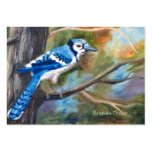 Blue Jay ArtCard Business Cards