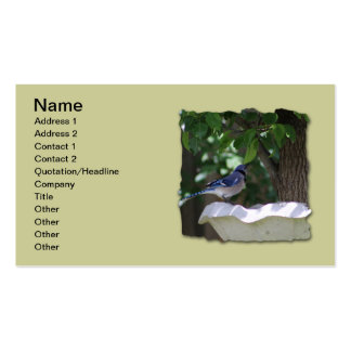 BLUE JAY AT BIRD BATH PACK OF STANDARD BUSINESS CARDS