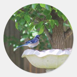 BLUE JAY AT BIRD BATH ROUND STICKER