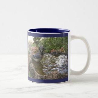 Blue Jay Bath Mug