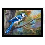 Blue Jay Blank Card