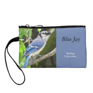 Blue Jay Coin Purse