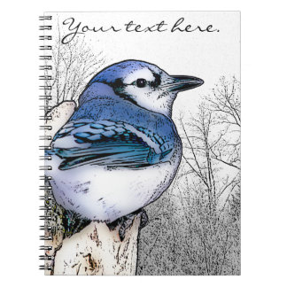 Blue Jay Drawing Notebook