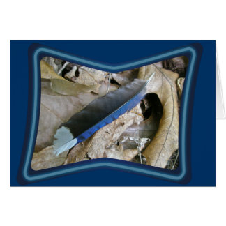 Blue Jay Feather Coordinating Items Greeting Card