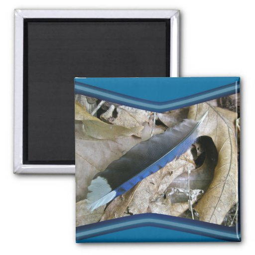 Blue Jay Feather Coordinating Items Magnet