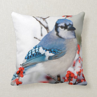 Blue Jay in Common Winterberry Cushion
