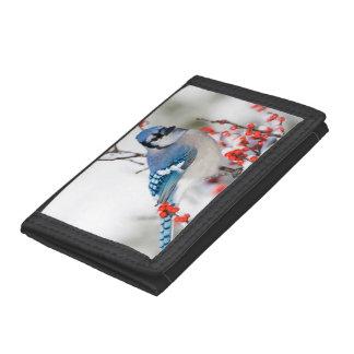 Blue Jay in Common Winterberry Tri-fold Wallet