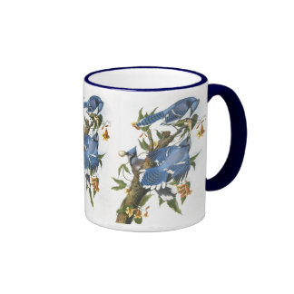 Blue Jay, John James Audubon Coffee Mug