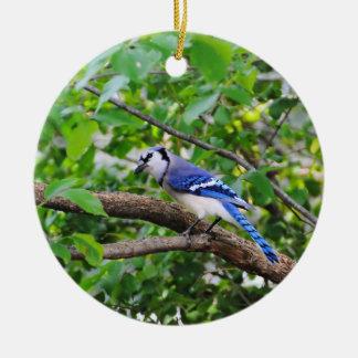Blue Jay Round Ceramic Decoration