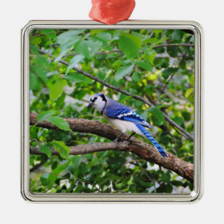 Blue Jay Silver-Colored Square Decoration