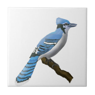 Blue Jay Small Square Tile