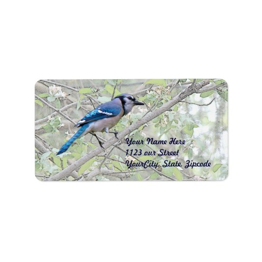 Blue Jay Songbird Label