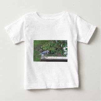 Blue Jay T Shirt