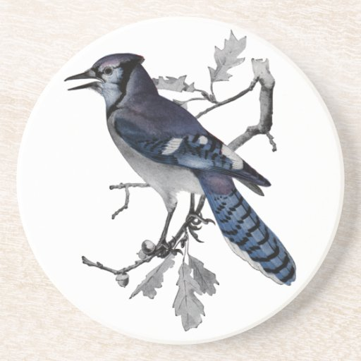 Blue Jay Vintage Cut Out Drink Coasters