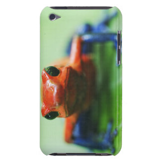 Blue Jean Frog iPod Touch Cover