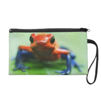 Blue Jean Frog Wristlet