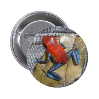 Blue Jeans Frog Button