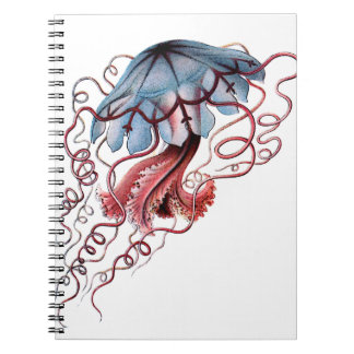 Blue jellyfish notebook