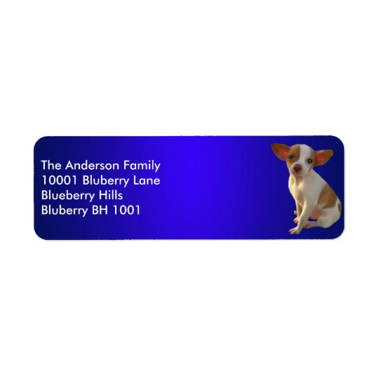 Blue Label Return Address Chihuahua